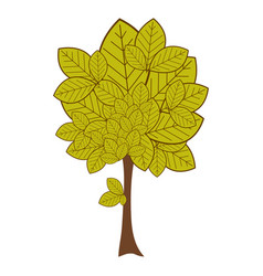 Green leafy tree plant with large trunk vector