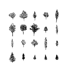 Trees black silhouettes set isolated on white vector image vector image