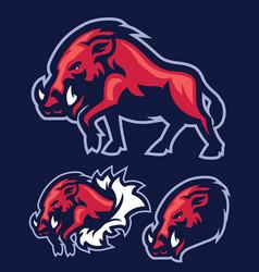Wild hog mascot vector