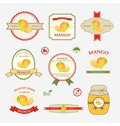 Mango set of label design vector