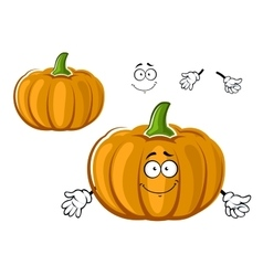 Cartoon orange ripe pumpkin vegetable character vector