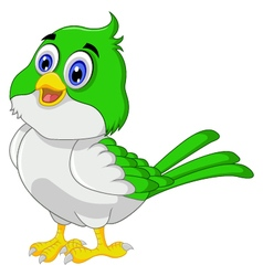 Cute bird cartoon vector