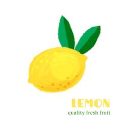 fresh lemon isolated on white background vector image vector image