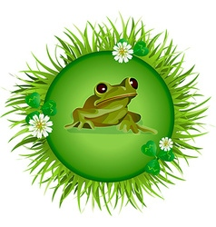 Frog on the meadow vector image vector image