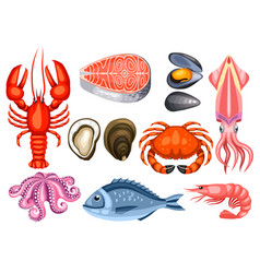 Various seafood set of fish vector