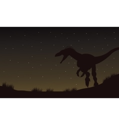 Eoraptor in fields at the night silhouette vector