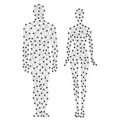 human line vector image vector image