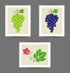 Postage stamps with grape bunch icons vector