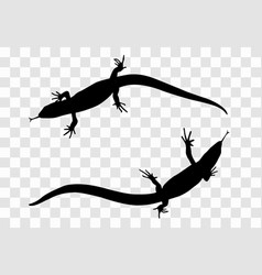 sticker on car of reptile silhouette of lizard vector image vector image