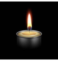 Candle in the Metal Candlestick Flame Fire Light vector image vector image