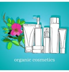 organic cosmetics vector image