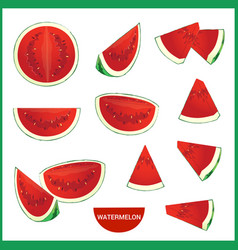 set of fresh watermelon in various slice styles vector image vector image
