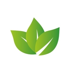 Leaf green plant nature icon graphic vector