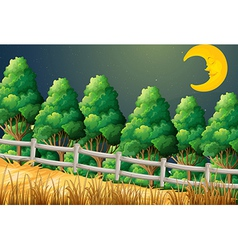 A forest with a sleeping moon vector image