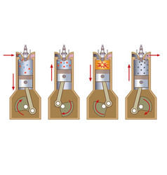 4 stroke benzene vector image