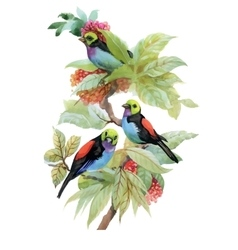 Berries and birds watercolor floral vector
