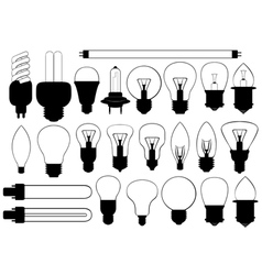 Bulbs vector