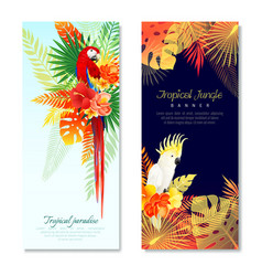 tropical parrots vertical banners vector image vector image