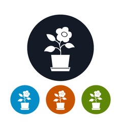 Four Types of Round Icons Flower Pot vector image