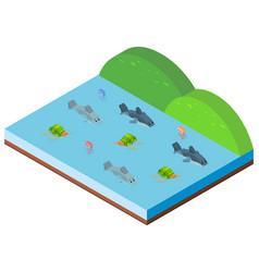 3d design for ocean scene with sea animals vector image