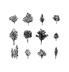 Trees black silhouettes set isolated on white vector