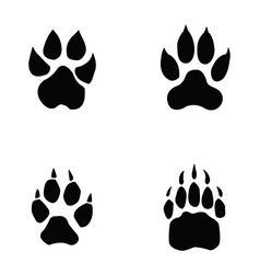 Lion tiger wolf bear footprint vector