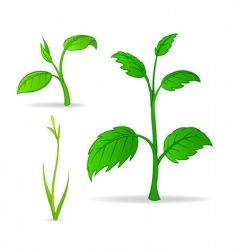 set of green cartoon plants vector image