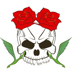 Pirate skull and two roses vector image vector image