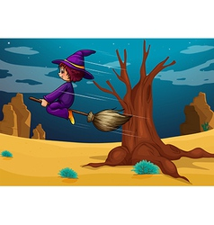 A witch riding a broom vector image