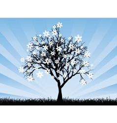 snowflake tree vector image