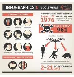 Infographics Ebola virus Symptoms deaths vector image
