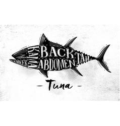 tuna cutting scheme vector image