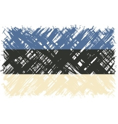 Estonian grunge flag vector