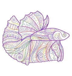 Betta fish zenart stylized vector