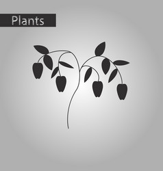 Black and white style icon of plant capsicum vector