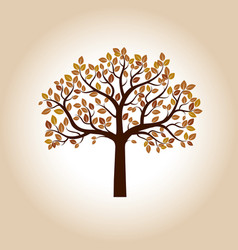 Color autumn tree vector