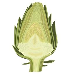 Halved artichoke vector image