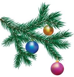 Brunch of fir tree vector