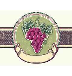 Grapes vintage label background for text vector image