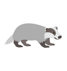 Cute smiling wild badger cartoon vector