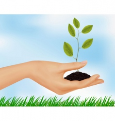 hand with plant vector image