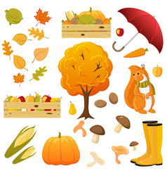 Big set of cartoon fall autumn objects elements vector