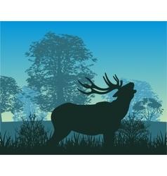 Deer in wood vector