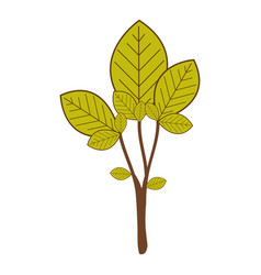 Large ramifications with green leaves vector