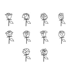 Thin line rose icon set vector