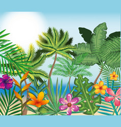 Tropical and exotics flowers and leafs vector