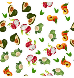 Exotic tropical fruit vector