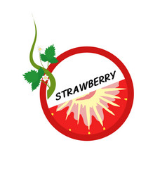 strawberry fruit icons flat style vector image vector image