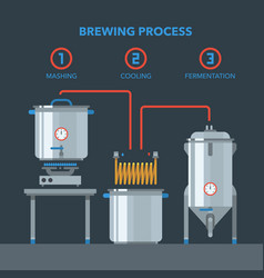 Home brewing infographic process vector
