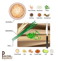 16 Ingredients Pad Thai or Stir Fried Noodles vector image
